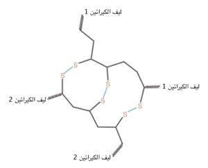 صيغة تركيب الكيراتين